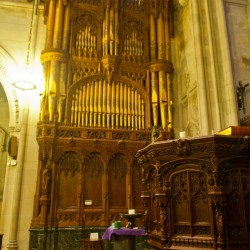 South Organ Case